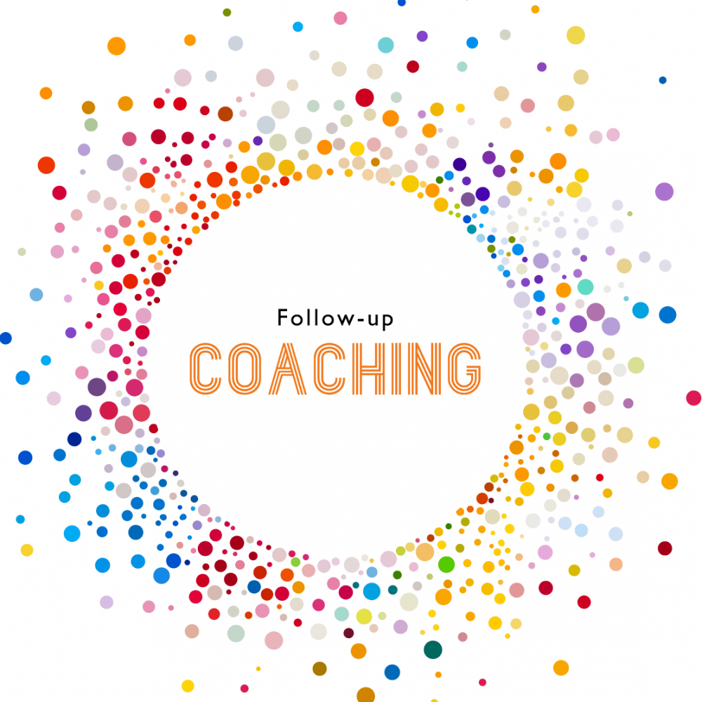 Wealthflow Money Coach | Webinar & Workshop Follow-up Coaching